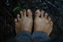 voet Stock Foto's
