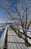 Voet brug in Suzdal, Rusland. Royalty-vrije Stock Foto's
