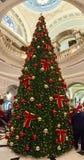 20 voet Kerstboom, in de Zaal! Royalty-vrije Stock Foto