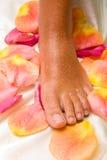 Voet op de zijdedoek met roze-bloemblaadjes Royalty-vrije Stock Foto