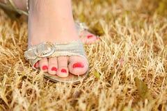 Voet op het droge gras Royalty-vrije Stock Foto's