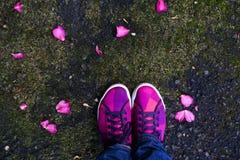 Voet over bloemblaadjestraat Stock Fotografie
