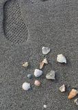 Voetafdruk dichtbij een stapel van shells op een strand dichtbij de Golf van Mexico Royalty-vrije Stock Fotografie
