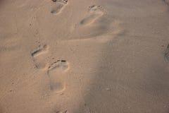 Voetafdruk in het zand op een strand Stock Afbeelding