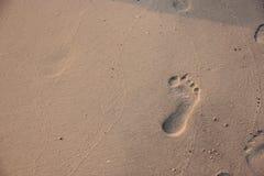 Voetafdruk in het zand op een strand Stock Foto