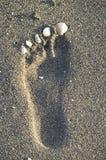 Voetafdruk in het zand op het strand stock fotografie