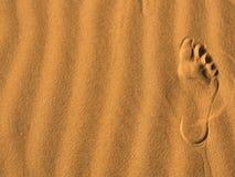 Voetafdruk op de woestijn Stock Foto's