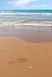 Voetafdruk op het strand Stock Fotografie