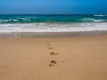 Voetafdruk op het strand Stock Foto's
