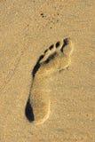Voetafdruk op het zand Royalty-vrije Stock Afbeeldingen