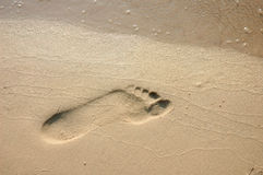 Voetafdruk op het Zand van het Strand royalty-vrije stock foto