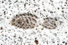 Voetafdruk op natte sneeuw sneeuwbrij outdoors royalty-vrije stock afbeelding