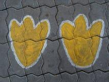 Voetafdruk op vloer Stock Fotografie