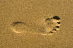 Voetafdruk op zand Stock Foto