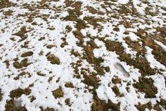 Voetafdruk van een mens in de sneeuw in bergen na de Winter in de Lente royalty-vrije stock foto's