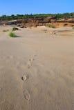 Voetafdruk in woestijn Stock Fotografie