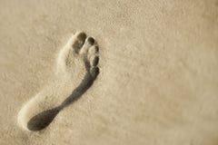 Voetafdruk in zand. Stock Afbeeldingen