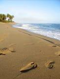 Voetafdruk in zand Stock Foto's
