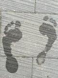 voetafdrukken Royalty-vrije Stock Afbeelding