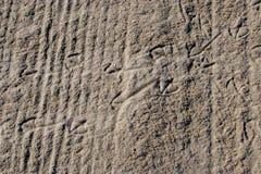 Voetafdrukken bij het zand Stock Foto's