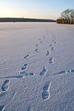 Voetafdrukken in de sneeuw stock fotografie