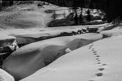 Voetafdrukken in de sneeuw - bw Stock Afbeeldingen