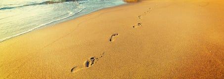 Voetafdrukken in het strand van La Jolla royalty-vrije stock afbeeldingen