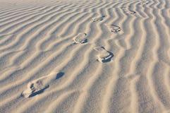 Voetafdrukken in het woestijnzand Stock Foto's