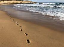 Voetafdrukken in het zand Stock Foto