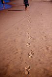 Voetafdrukken in het zand Royalty-vrije Stock Afbeelding