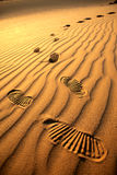 Voetafdrukken in het zand Royalty-vrije Stock Afbeeldingen