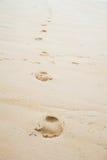 Voetafdrukken in het Zand Stock Fotografie