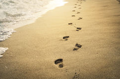 Voetafdrukken in het zand Stock Foto's