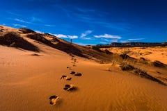 Voetafdrukken in het zand Alleen in de woestijn Royalty-vrije Stock Foto