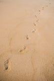 Voetafdrukken in het zand door een weg Royalty-vrije Stock Foto's
