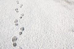 Voetafdrukken op de sneeuwachtergrond Royalty-vrije Stock Foto