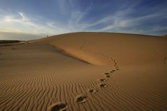 Voetafdrukken op het duin van het woestijnzand Stock Fotografie