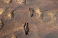 Voetafdrukken op het gouden zand op het strand royalty-vrije stock afbeeldingen