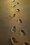 Voetafdrukken op het natte zand Stock Foto