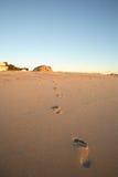 Voetafdrukken op het strand royalty-vrije stock foto's