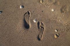 Voetafdrukken op het Zand Stock Foto's