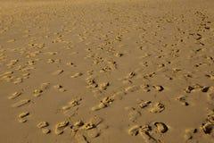 Voetafdrukken op het Zand Stock Afbeelding