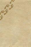 Voetafdrukken op huidachtergrond Stock Foto