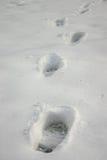 Voetafdrukken op sneeuw Stock Fotografie