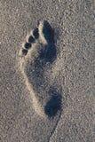 Voetafdrukken op strand royalty-vrije stock afbeelding
