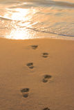 Voetafdrukken op strandzand Stock Foto