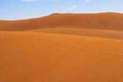 Voetafdrukken op zand Royalty-vrije Stock Afbeelding