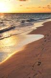 Voetafdrukken op zandig strand bij zonsopgang Royalty-vrije Stock Afbeelding