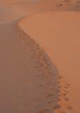 Voetafdrukken op zandwoestijn Royalty-vrije Stock Afbeelding