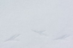 Voetafdrukken in sneeuw stock afbeeldingen